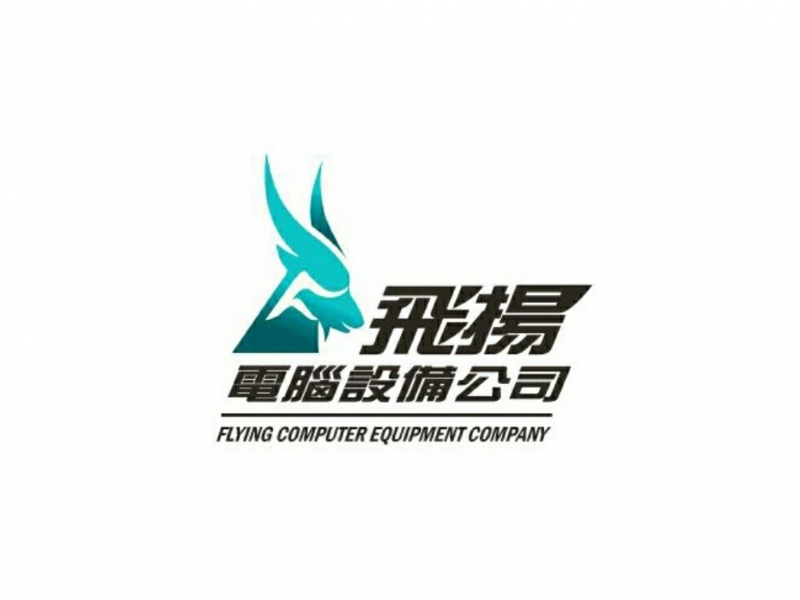 Flying Computer Equipment Company